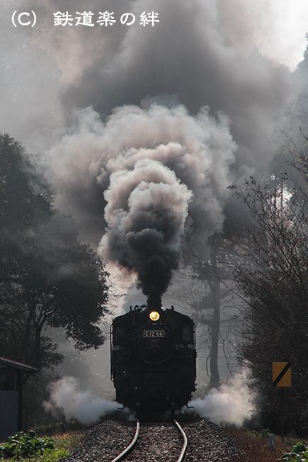 20111130多田羅02