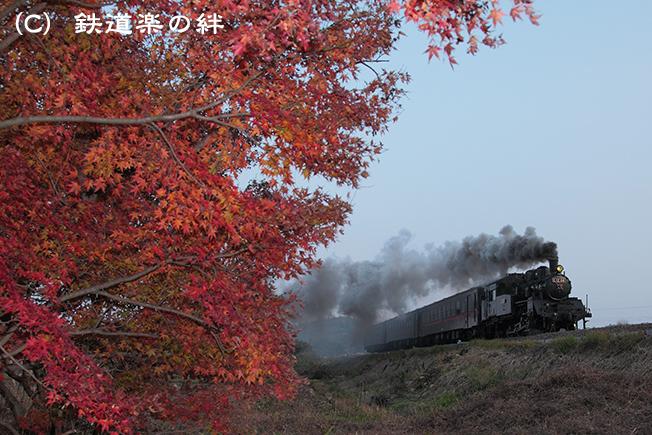 20111130北山015D2