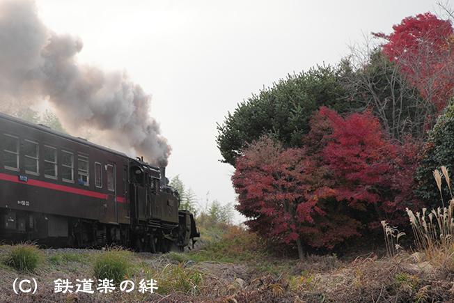 20111130北山025D2