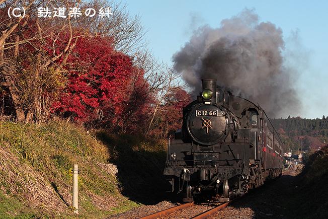 20111204北山025D2
