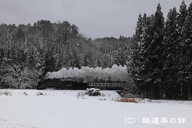 20111217野沢015D2