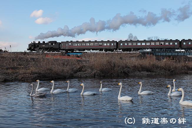 20120107益子035D2