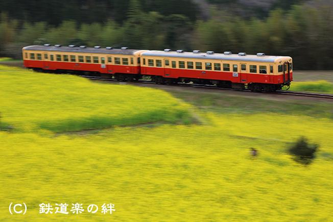 20160326養老渓谷003