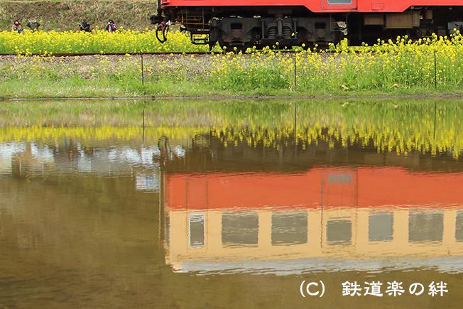 20160326養老渓谷008