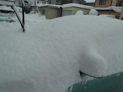 2016年1月雪の2