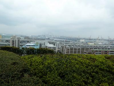 2016年3月港の見える丘公園の3
