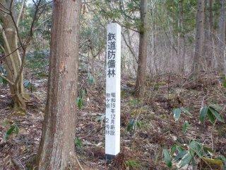 s鉄道防備林