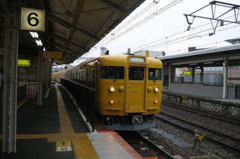 P1040800.jpg