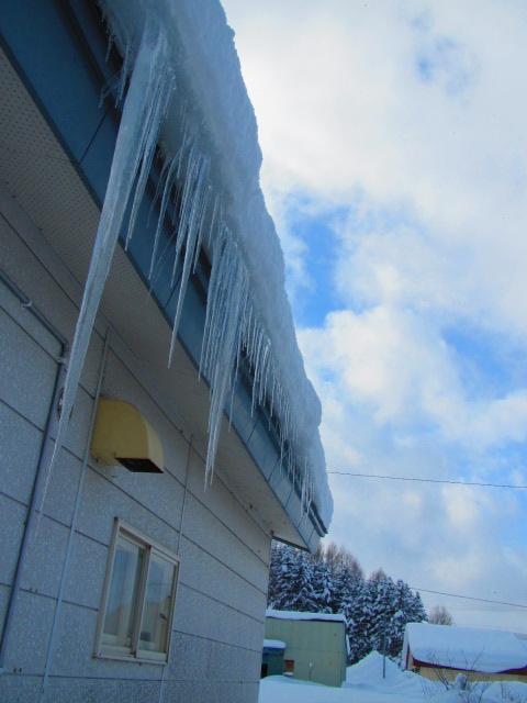 雪下ろし 005