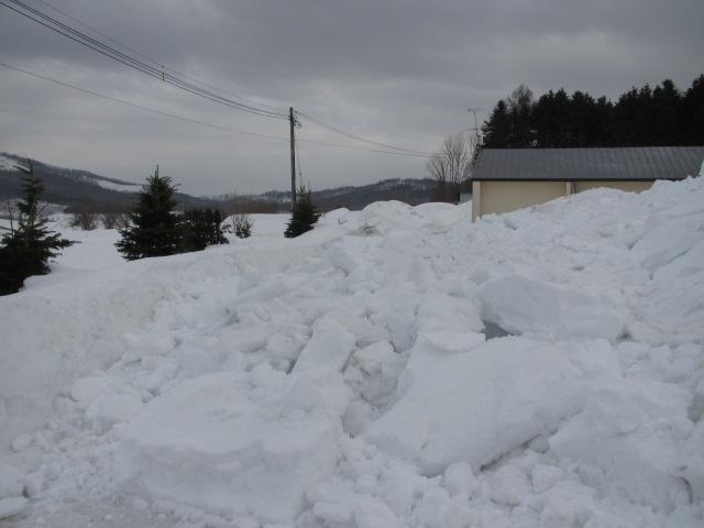 落雪 002