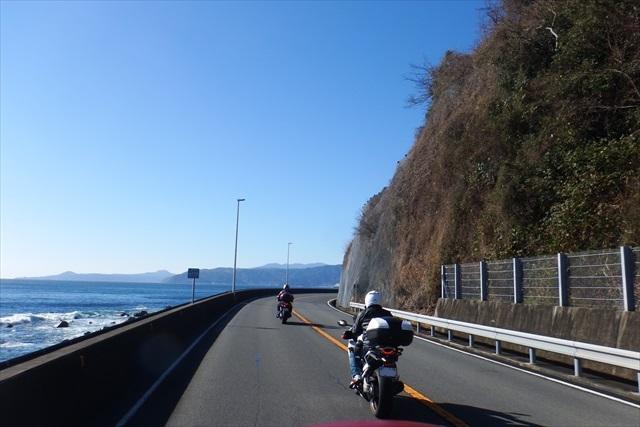 2016_kawazu(20).jpg