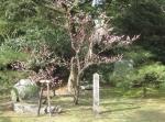 京都御苑中山家跡明治天皇生誕の地碑201637
