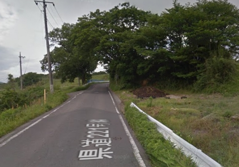 a県道に覆いかぶさる立木①田島地区