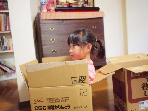 tokozenji段ボールで家作り160220