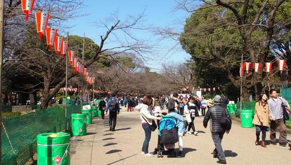 春の庭園開放@東京国立博物館-1