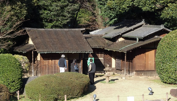 春の庭園開放@東京国立博物館(4)-3
