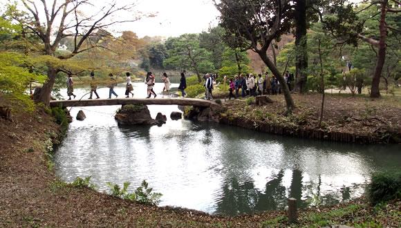 六義園のしだれ桜(2)-2