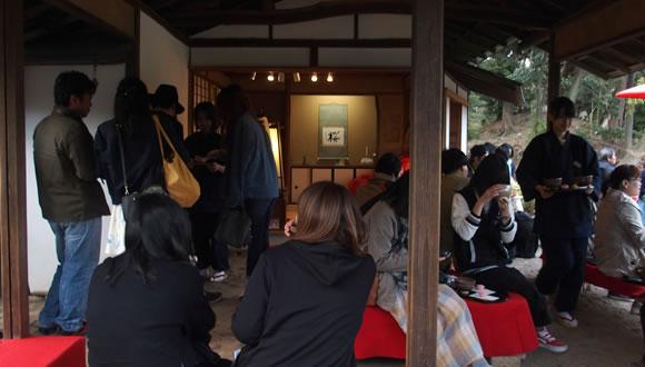 六義園のしだれ桜(2)-4