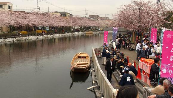 第2回新川千本桜まつり-2