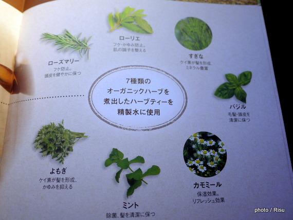 さくらの森「Herb Garden(ハーブガーデン)」