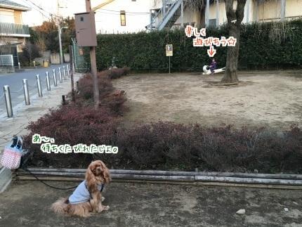 嵐丸 2016.1.29-13