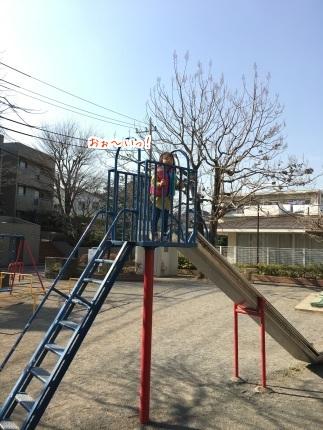 嵐丸 2016.2.19-2