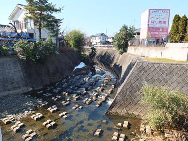 2柳瀬川0128