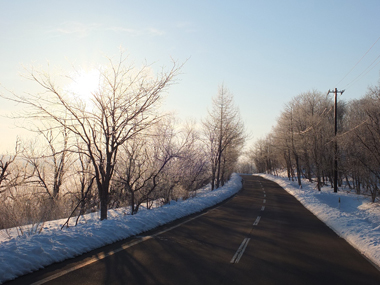 3樹氷0228