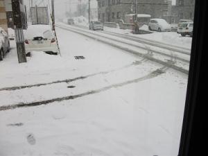 160224雪は降る