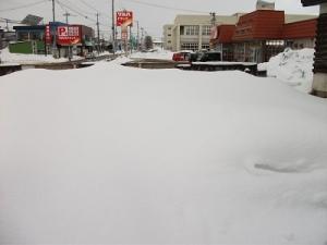 160302雪畑