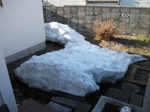 160328残雪