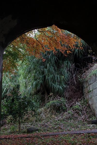 小島北部砲台跡 151213 04