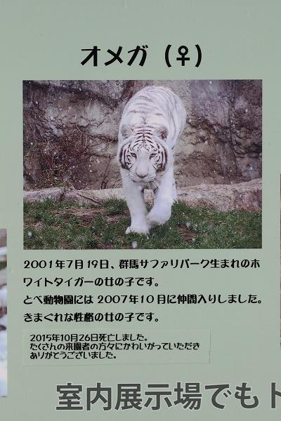 TobeZOO オメガ 151227 01