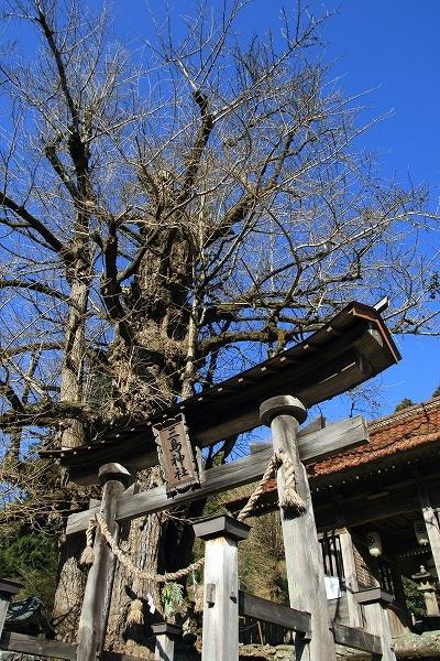 小田三島神社 160101 01