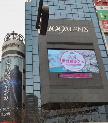 sakurachina1603220201.jpg