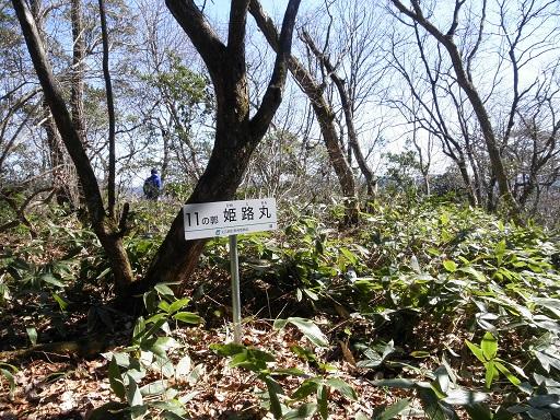 日野山11