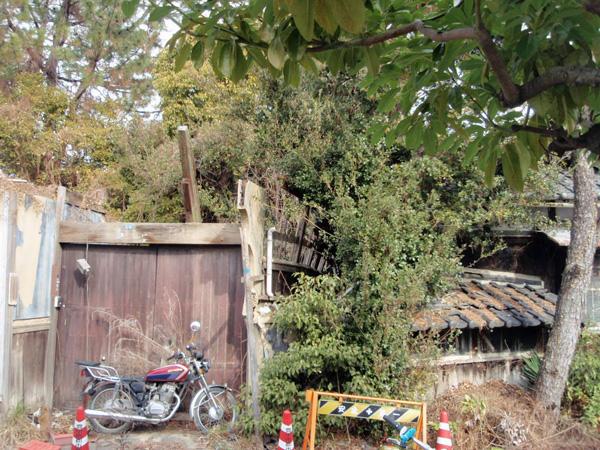 利倉一丁目第三児童遊園 (5)