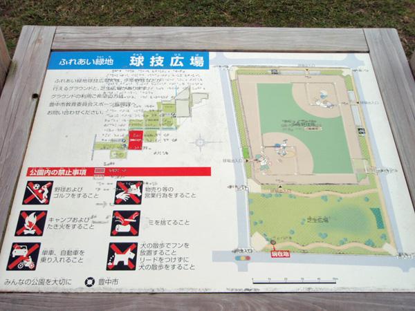 球技広場芝生広場 (1)