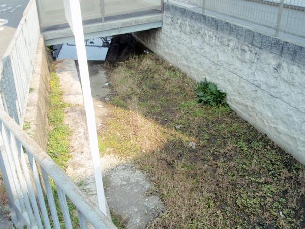 原田井の洗い場 (2)