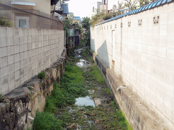原田井の洗い場 (3)