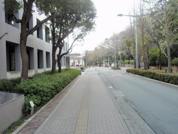 大阪大学マチカネワニ発掘碑 (6)