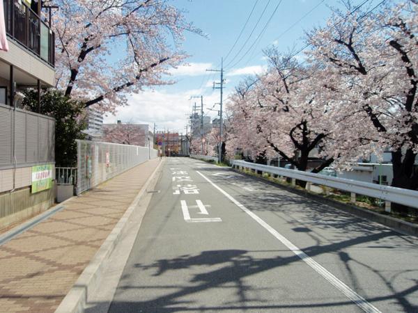 野田堤防跡 (1)