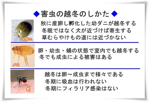004IMG_1091.jpg