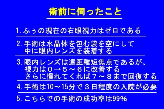 004IMG_8091.jpg