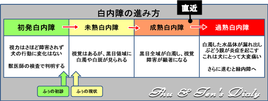 004IMG_8882.jpg