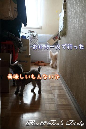 008IMG_6768.jpg