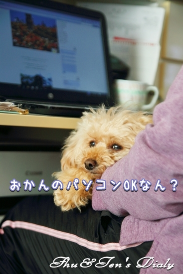 009IMG_7679.jpg