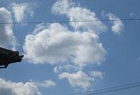 わんこ雲?