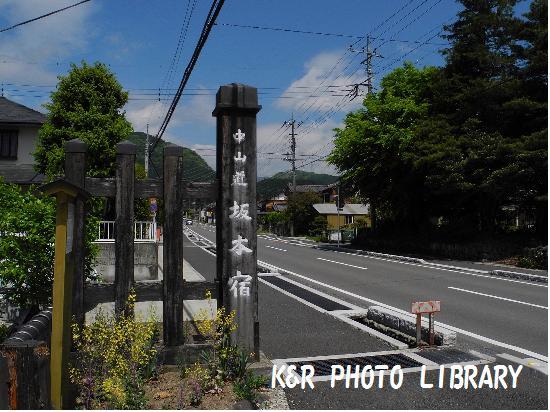 5月4日坂本宿1