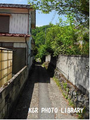 5月4日坂本宿5